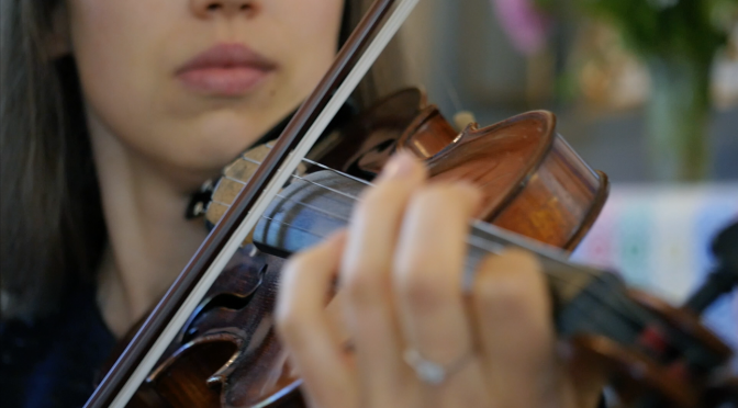 Woman playing the violin. Free HD video footage